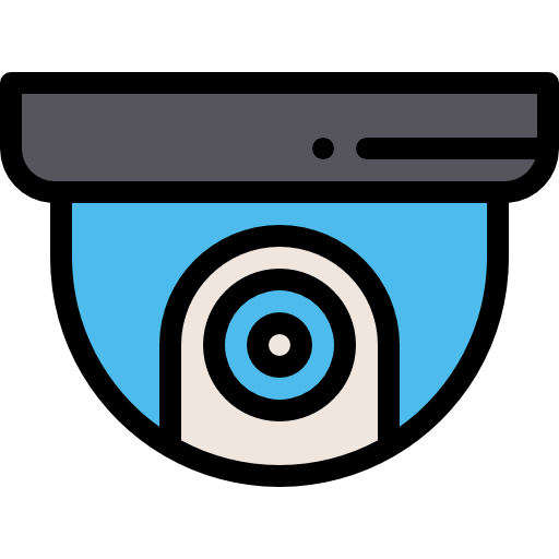 Biometric-security-and-camera-systems-New York